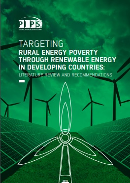 Targeting rural energy poverty through renewable energy in developing countries -  Literature review and recommendations